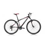 Ποδήλατο βουνού Ferrini R-2 29''